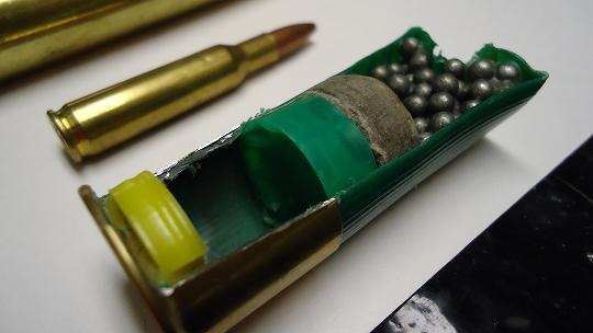 Bullet and Casing